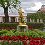 Петергоф: перед дворцом Монплезир
