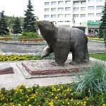 Пермь: медведи на улице